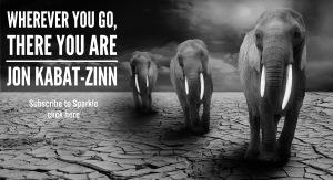 Whereever you go Kabat-Zinn